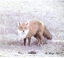 Crafty Fox by SCbyKK