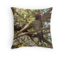 Anna's Hummingbird ~ Male  Throw Pillow
