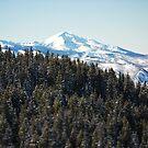 Aspen Views by Ryan Davison Crisp