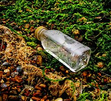 *Bottle and sea weed*.   Man made and nature series by Karen  Betts