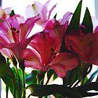 Sunshine Flowers by Amyypops
