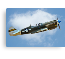 White-tail Warhawk on the up Canvas Print