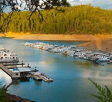 Silverthorn Marina by Tracy Jones