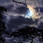 Moon Break by Silken Photography