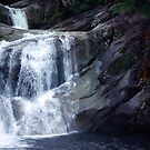 Top End of Josephine Falls, FNQ, AU by Kerryn Madsen-Pietsch