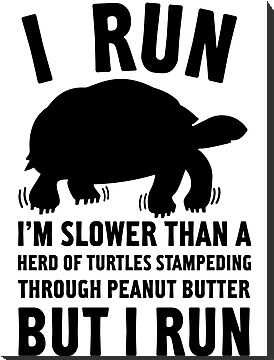 I Run Slower Than A Herd Of Turtles by Look Human