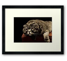 One second till action Framed Print