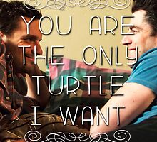 You're the only turtle I want. by DangerLine