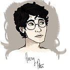 Harry Potter by Wackernagel