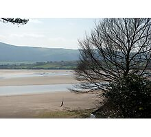 The Estuary seen from Portmeirion Photographic Print