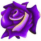 Purple Rose by Alex Birch