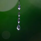Dew drops  by Clare Colins