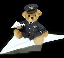 ????? COME FLY WITH ME I'M A BEARY GOOD PILOT ????? by ✿✿ Bonita ✿✿ ђєℓℓσ
