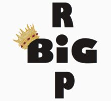 RIP BIG by mob345