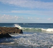 Snapper Rocks by FangFeatures