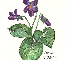 sweet violet by Sam Burchell