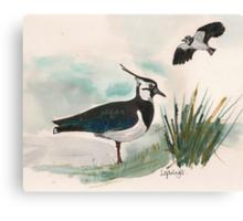 Lapwings Canvas Print