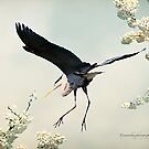 Great Blue Heron in Spring by Yannik Hay