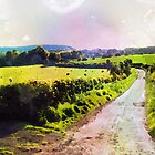 Scottish Country Lane by GraemeHeddle