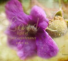 Lift up Your countenance-Psalm 4:6 by vigor