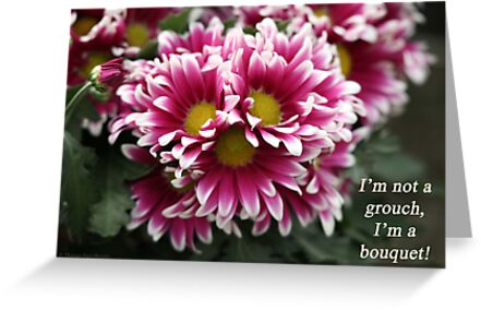 I'm not a grouch, I'm a bouquet. by Thomas Murphy