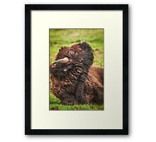 Heads up to Spring Framed Print