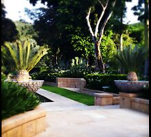 Even More Formal Gardens by Niki Smallwood