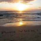 Pura Vida! by aura2000