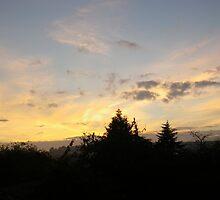 SKY IN FLAMES by Alrescha
