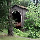 Pass Creek Covered Bridge by Dave Davis