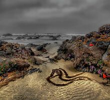 Tide Is Out by Charles & Patricia   Harkins ~ Picture Oregon