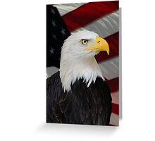 Mr. Bald Eagle Greeting Card