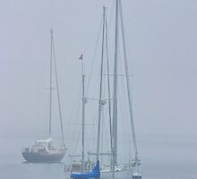 Three sailboats harbored in the mist by Randall Nyhof