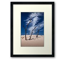 Silver Lake Dune with Dead Trees and Cirrus Clouds Framed Print