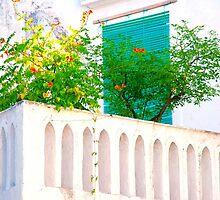 Balcone con fiori.. by JOSEPHMAZZUCCO