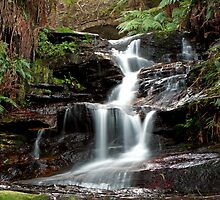 Upper Leura Cascades by SharronS