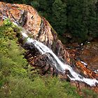 Lower cascades, Leura by SharronS