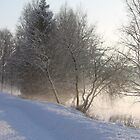 Cold winters day along the river Glomma, Elverum, Norway. by UpNorthPhoto