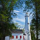 Sturgeon Point Michigan Lighthouse seen through the trees by Randall Nyhof