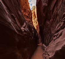 Spooky Gulch Slot Canyon by Dick Paige