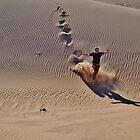 Dune plunge by Karen01
