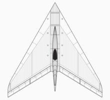 Horten Ho XIIIB Flying Wing Concept by zoidberg69
