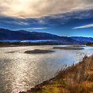 Wairau River by Robyn Carter