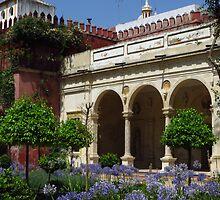 Alliums, Casa de Pilatos, Sevilla by wiggyofipswich