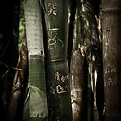 Botanic Bamboo by mewalsh