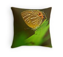 swllowtail  butterfly Throw Pillow