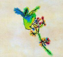 Rainbow bird by Marsea