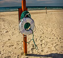 Summer Beach Life Preserver by Randall Nyhof