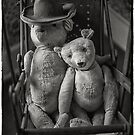 Teddy Bear couple by Steve Mills