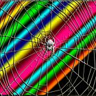 Space traveling spider by Carolyn Clark